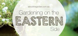 Gardening on the East Side in Australia