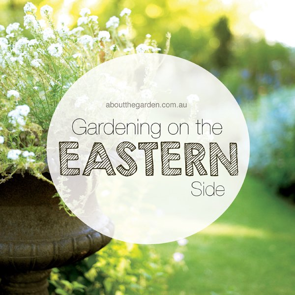 Gardening on the eastern side about the garden magazine australia