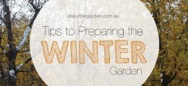 Tips To Preparing Your Garden For Winter
