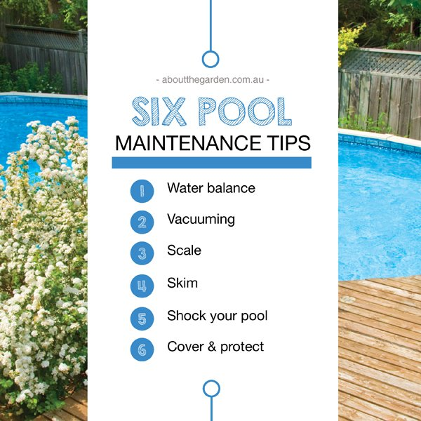 maintaining your swimming pool about the garden about