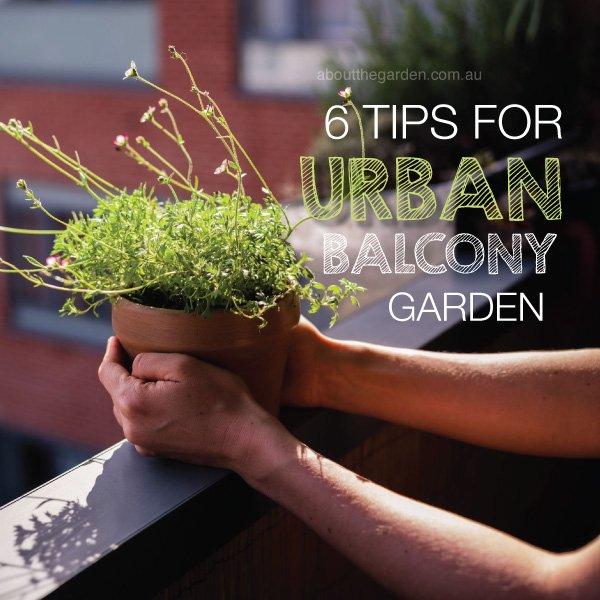 6 tips for ultimate urban balcony garden #aboutthegardenmagazine