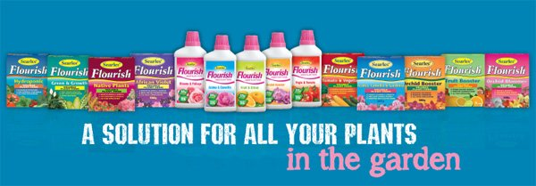 Flourish Range Liquid Plant Food Fertiliser.indd