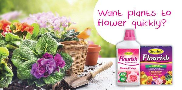 Searles Liquid Plant Food Fertiliser for Healthy Gardens in Aust