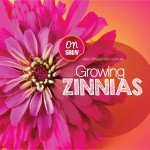 How to grow Zinnias in Australia #aboutthegardenmagazine.indd