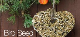 Easy Bird Seed Hanging Feeder to make