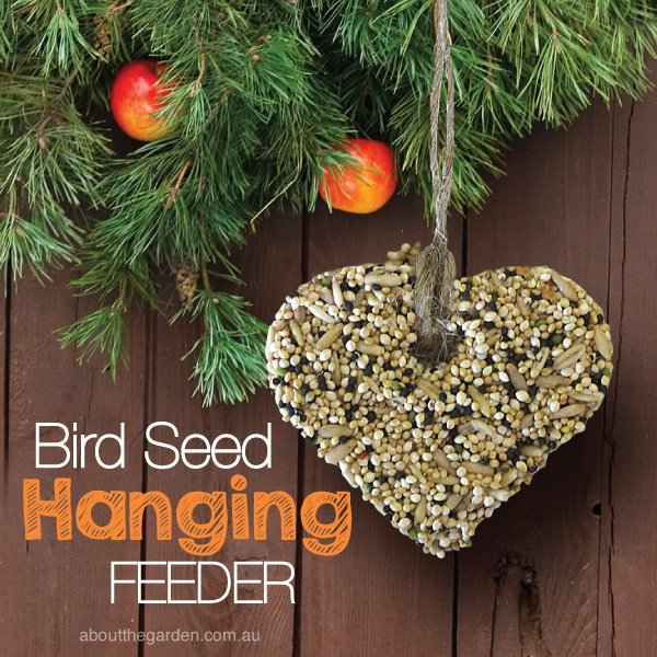 Bird Seed Hanging Feeder recipe #garden aboutthegarden.com.au.in