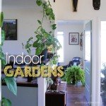 Indoor Garden Ideas Indoor Plants #indoorgardens #aboutthegarden