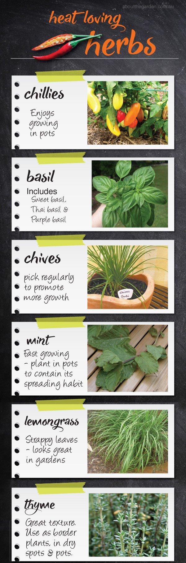 Herbs for summer, Australian gardens #aboutthegardenmagazine.ind