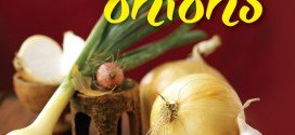 How to plant and grow onions