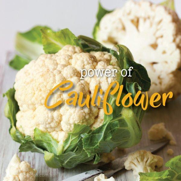 How to grow, plant harvest cauliflower in Australia #aboutthegar