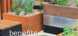 Raised garden bed benefits