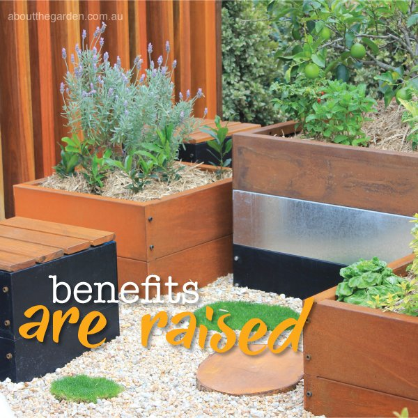 Raised garden bed benefits in Australia #aboutthegardenmagazine.