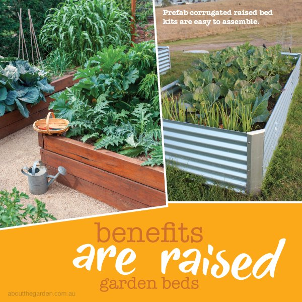 Raised garden bed ideas and benefits in Australia #aboutthegardenmagazine
