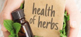 Herbs for healthy lifestyle – Natural Medicine