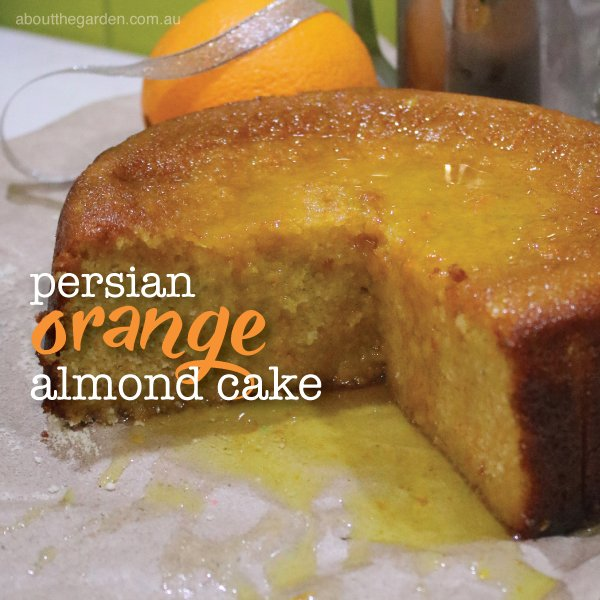 Presian orange and almond cake - gluten free cake recipe.indd