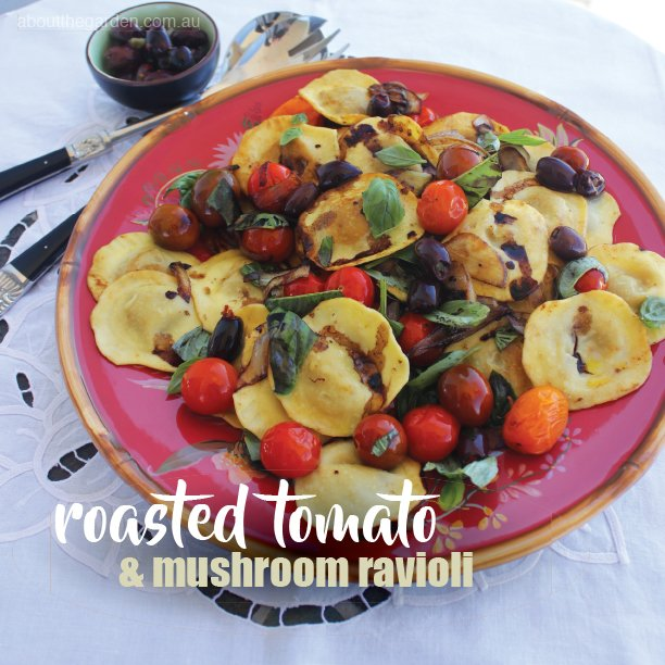 roasted tomato and mushroom ravioli recipe.indd
