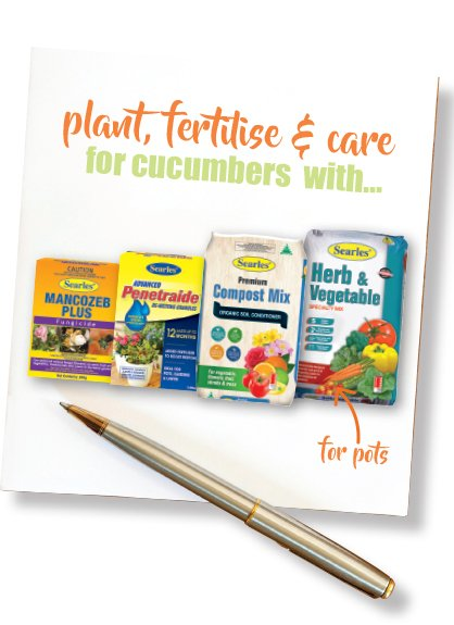 Growing Cucumbers -  fertilising and planting cucumbers #aboutthegardenmagazine-3