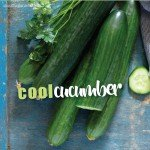 Growing Cucumbers - planting and harvesting cucumbers #aboutthegardenmagazine-1