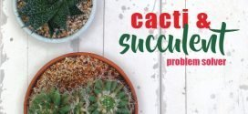 Cacti and succulent problems